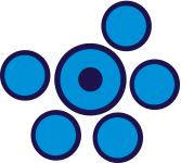 Team Azzurro