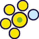 gialli-verdi-azzurri-1
